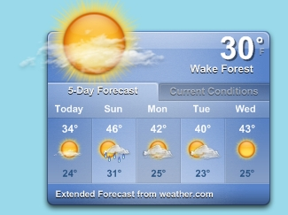 Wake Forest weather 1/17/2009
