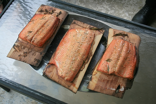 wild salmon is a smart choice for your diet